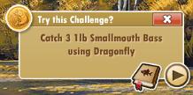 challengesuggestion
